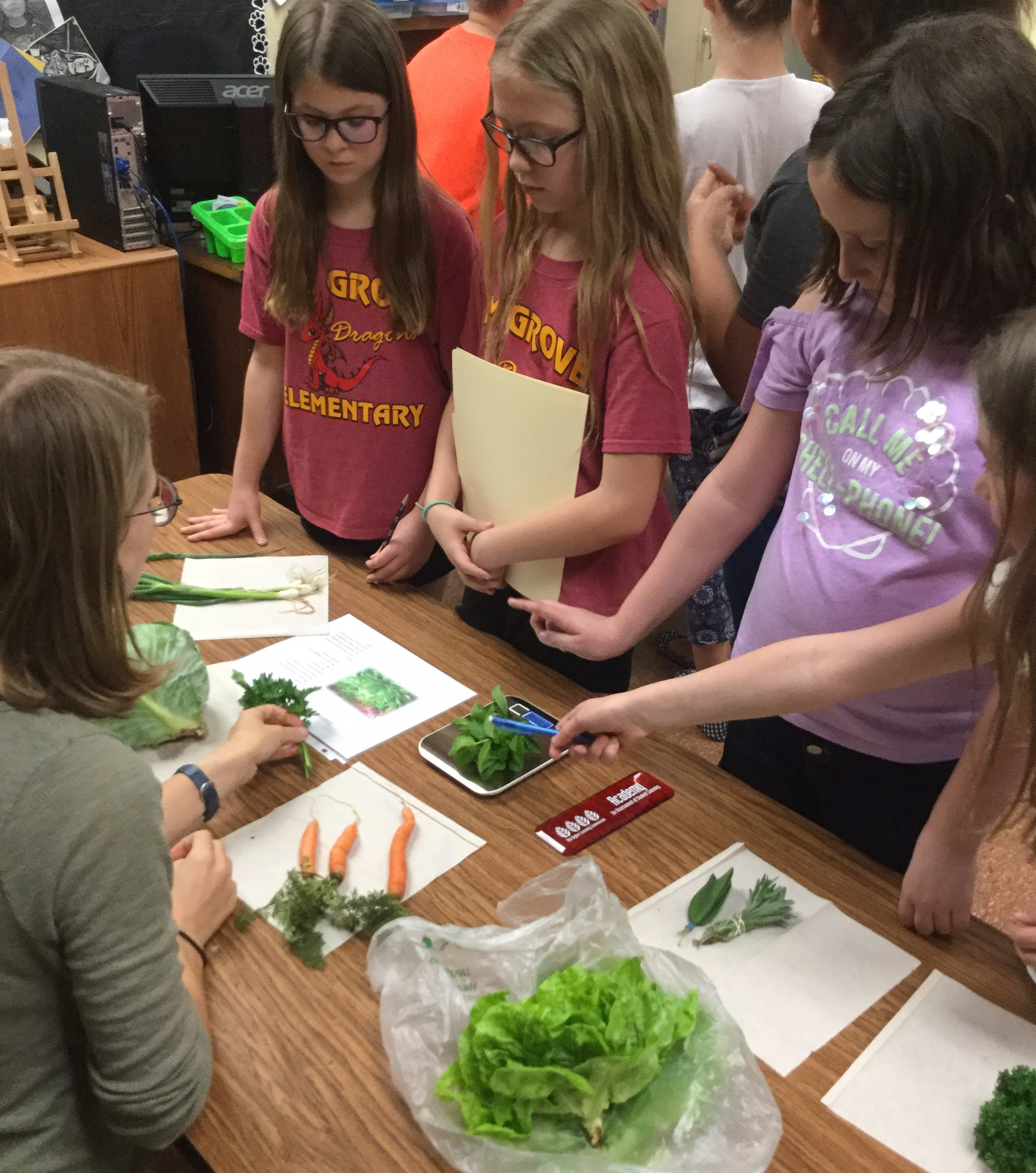 Students examine and measure the quality of a variety of fresh crops.